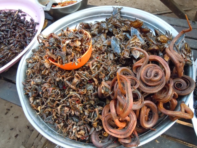 Bugs, Beetles and Jerky Snake – Daily Food Photo