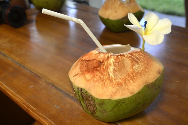 Young Coconut – Daily Food Photo