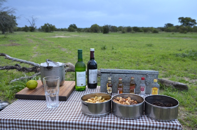 Afternoon Tea, Drinks and Snacks on Safari in South Africa
